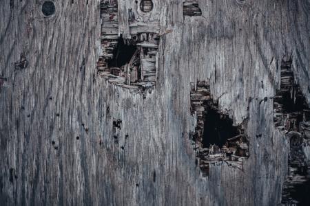 Holed Grunge Wood Texture