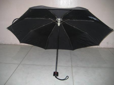Inside An umbrella
