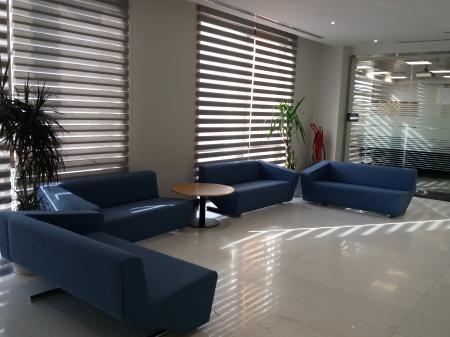 Interior - Blue Sofa