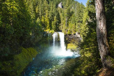 Koosah Falls, Oregon, October