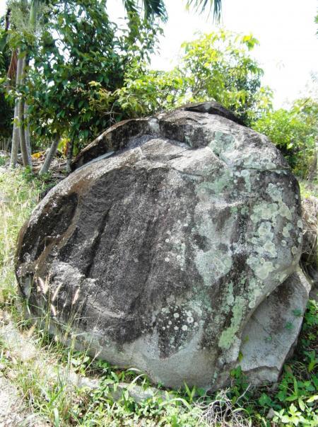 Large Boulder in the Rainforest