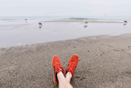 Legs at the seashore, seagulls in the background