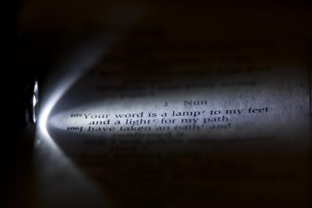 Light my Path