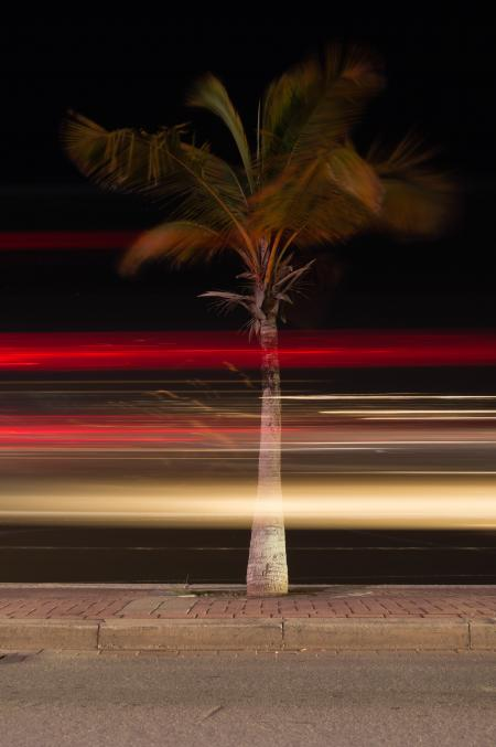 Light Trails at the Boulevard