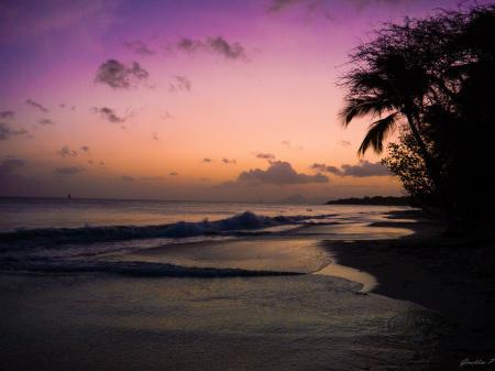 Madinina, les salines couche de soleil