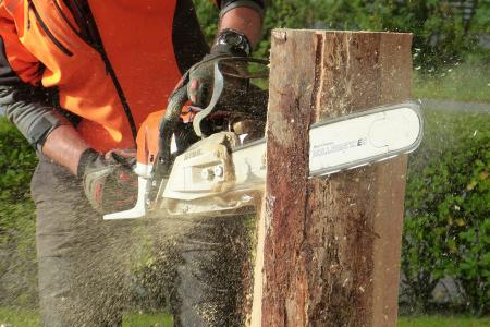 Man Cutting Tress Using Chainsaw