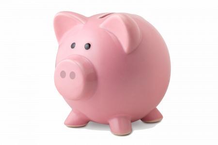 Money pig box