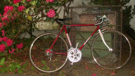 Morrison 10 Speed Bike
