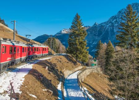 Moving Train With Mountain and Trees in Background