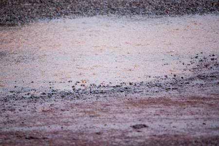 Muddy puddle in hard rain