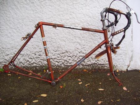 Neglected 1970s Healing 10 Speed Cycle