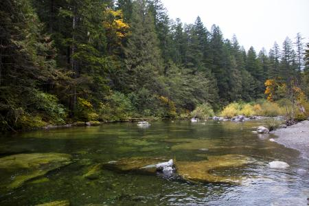 North Fork of Santiam River, Oregon, Autumn