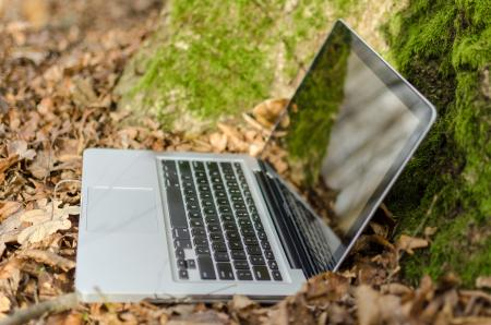 Notebook PC in Forest