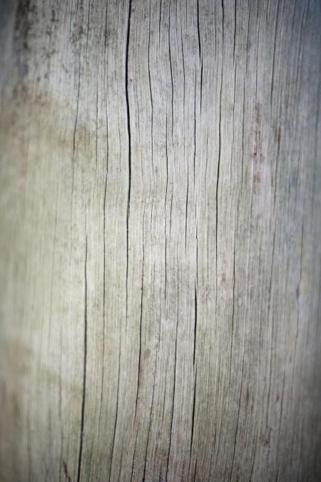 Old Grunge Wooden Surface