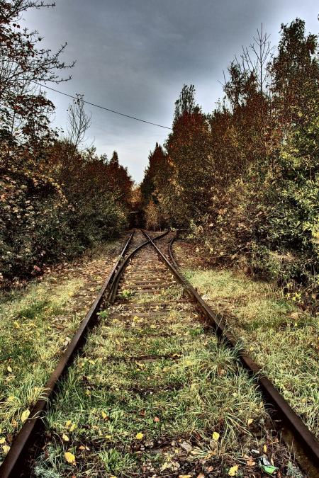 Old Rasilroad Tracks