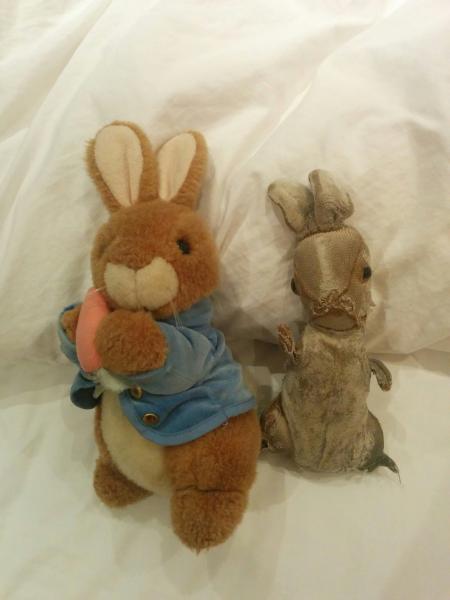 Old Ratty Rabbit