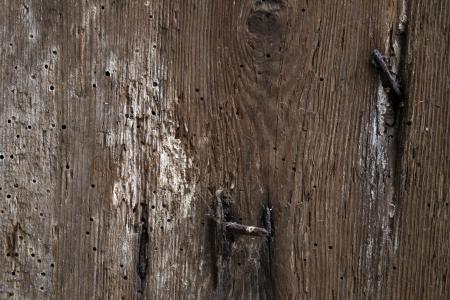 Old Worn Wood
