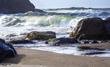 Oregon Coast, in November