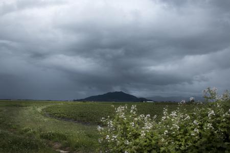 Oregon Spring Stormy Skies