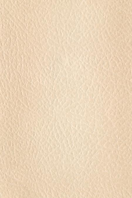 Paper Texture - White Leather