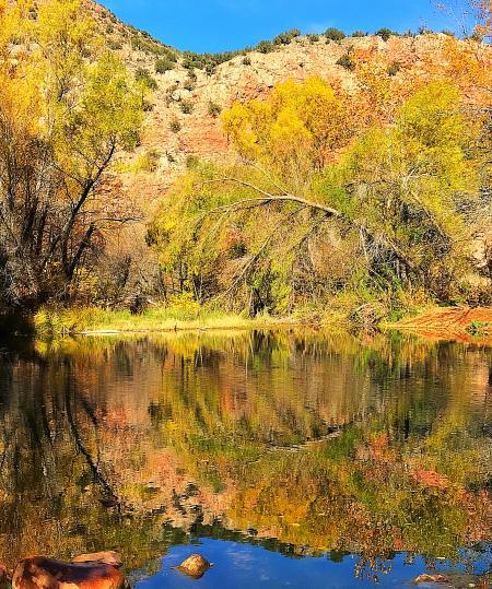 Parsons Trail (2017-11-25)