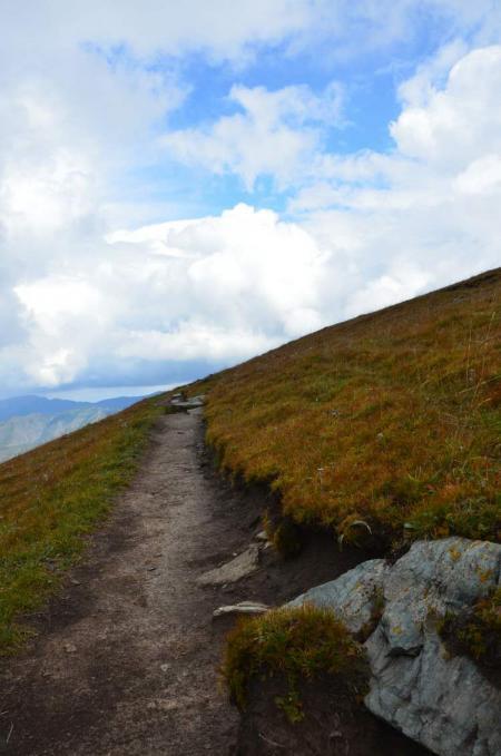 Path Though the Grasslands