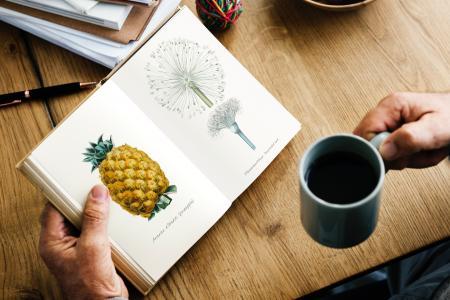 Person Holding Gray Ceramic Mug and Book