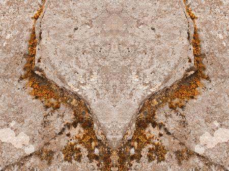 Phoenix Moss Wings