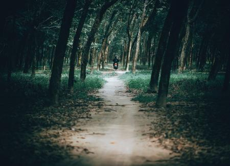 Photo of Man Riding Motorcycle in the Forest