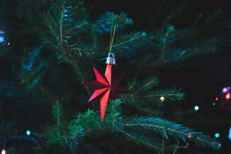 Photo of Red Christmas Tree Decor