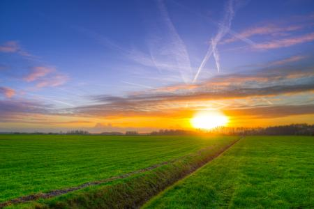 Photography of Green Grass Field during Golden Hour