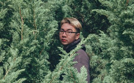 Photography of Man Near Pine Trees