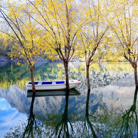 Photography of White and Blue Wooden Boat On Water
