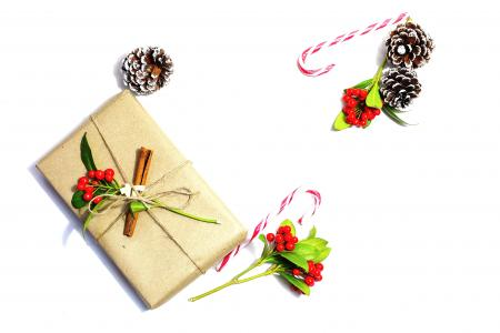 Pine Cone Beside Candy Cane