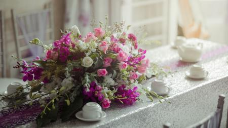 Pink and White Petaled Flower