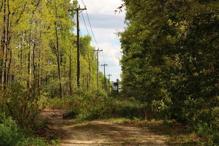 Power Supply Path