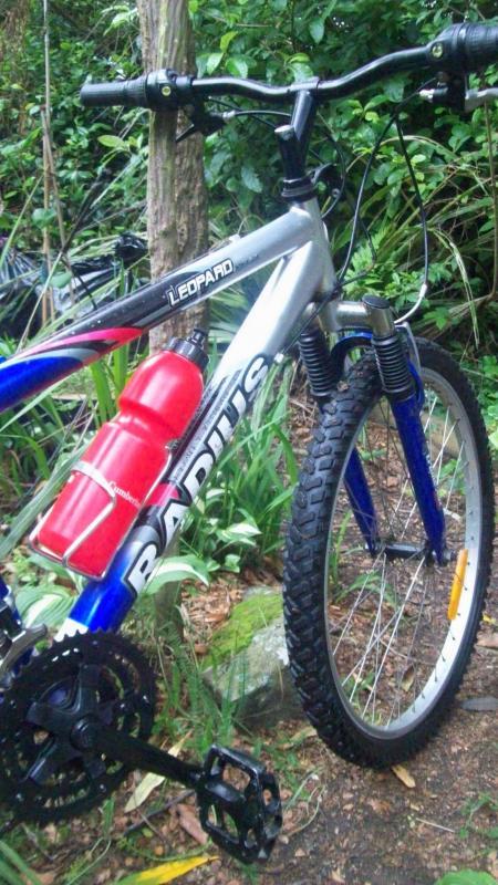 Radius bike at Roberts Park
