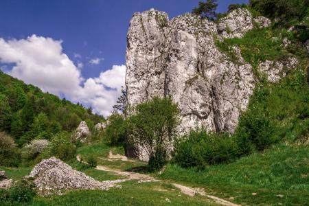 Rock climbers - Brama Bolechowicka, Bolechowice, Poland