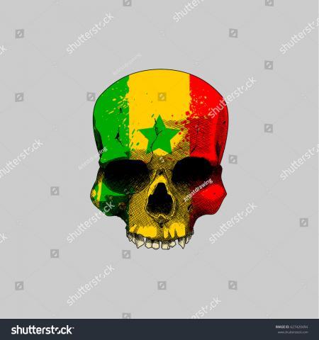 Senegal Grunge Flag