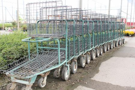 Shopping carts in a garden center