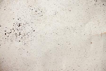 Subtle Concrete Texture