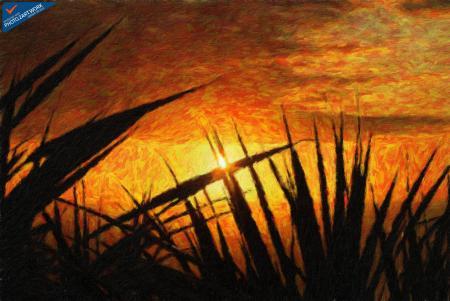 Sunset - ID: 16235-142759-7161