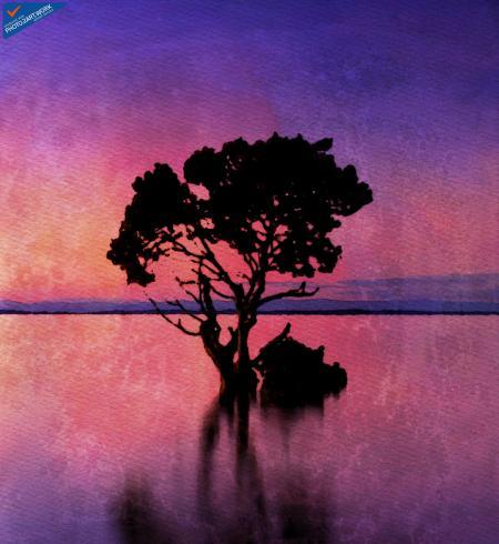 Sunset - ID: 16235-220504-2829