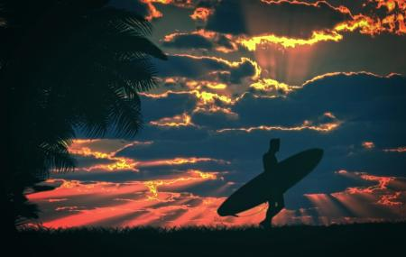 Surfer and surfboard at sunset