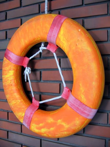 Swimming Pool Life Ring
