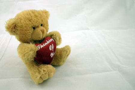 Teddy bear on left