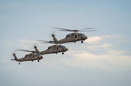 Three Sea Hawk Helicopters