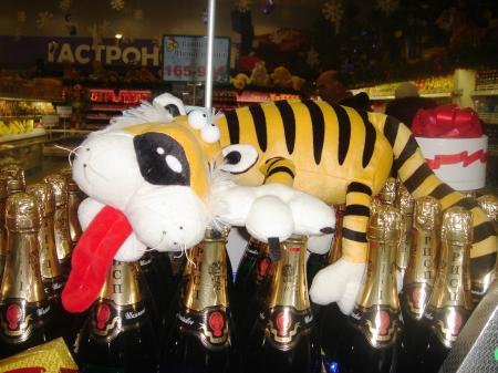 Tiger champaign new year