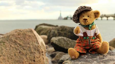 Toy on Rock by Sea Against Sky
