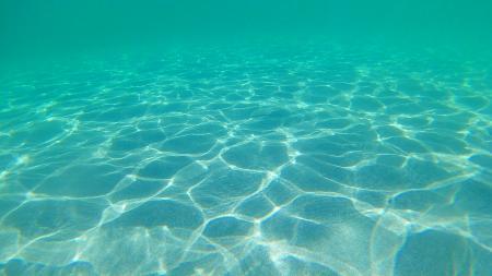Underwater, Molat Island, Croatia